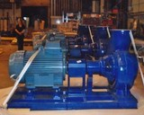 End Suction Stainless Steel Pump with Baseplate